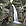 Great Waterfall, Veľký Sokol, Hrabušice